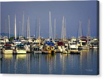 The Harbor After The Storm Canvas Print