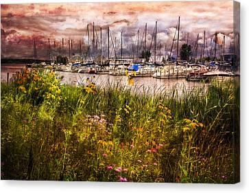 Tropical Beach Canvas Print - The Harbor by Debra and Dave Vanderlaan