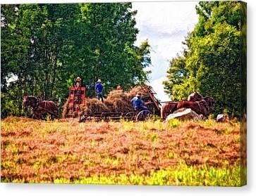 Impasto Horses Canvas Print - The Harvest Impasto by Steve Harrington