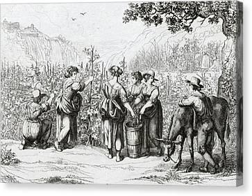 Winemaking Canvas Print - The Harvest In Tivoli, La Vendemmia In Tivoli by Italian School