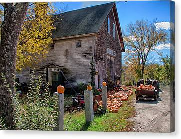 Farm Stand Canvas Print - The Harvest Is In by Jeff Folger