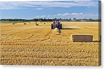 The Harvest Canvas Print by Keith Armstrong