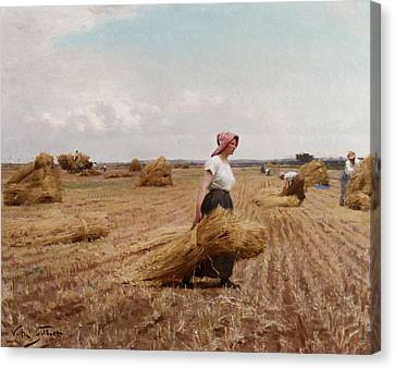 The Harvest Canvas Print