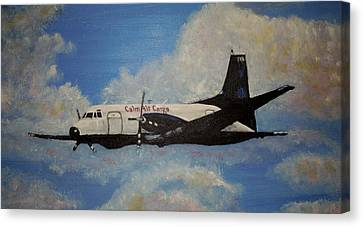 The Hawker Canvas Print by Marilyn  McNish