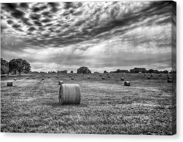 The Hay Bails Canvas Print by Howard Salmon