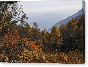 The Heart Of Autumn Canvas Print by Lynn Bauer