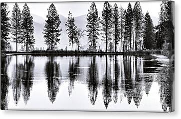 The Heron Pond Canvas Print