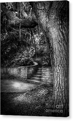 Oak Harbor Canvas Print - The Hidden Steps 1 by Marvin Spates