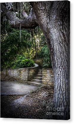 Oak Harbor Canvas Print - The Hidden Steps 2 by Marvin Spates