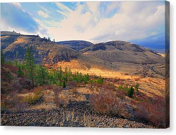 Terra Firma Canvas Print - The Hills by Gary Silverstein