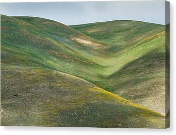 The Hills Of Gorman Ca Canvas Print