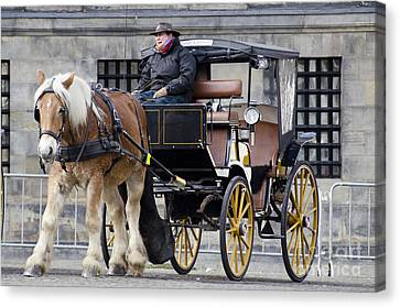 The Horse Buggy Canvas Print by Pravine Chester