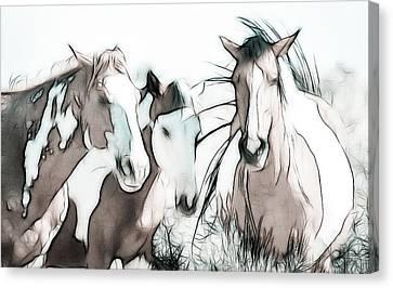 The Horse Club Canvas Print