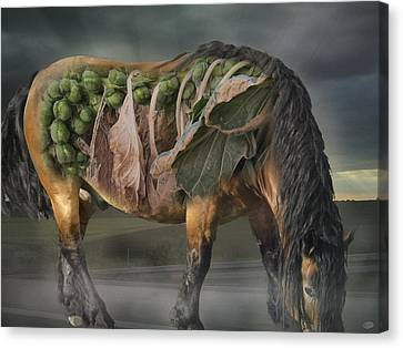 The Horse Of Mr. Roentgen Canvas Print by Nafets Nuarb