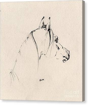 The Horse Sketch Canvas Print by Angel  Tarantella