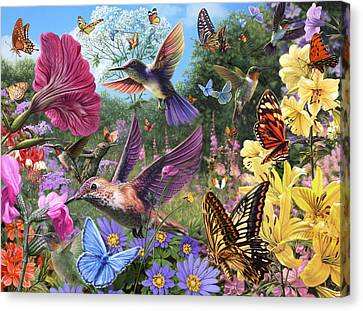 The Hummingbird Garden Canvas Print by Steve Read