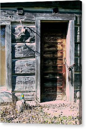The Hundred Year Old Door Canvas Print