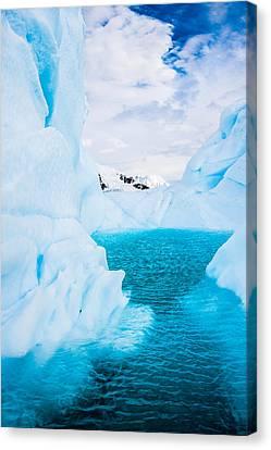 The Iceberg Lagoon - Antarctica Iceberg Photograph Canvas Print by Duane Miller