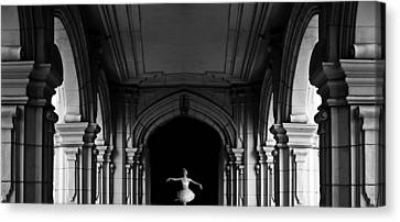 The Incredible Lightness Of Being Canvas Print by Larry Butterworth