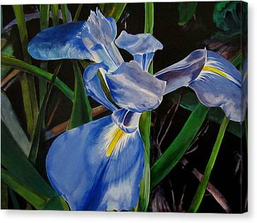 The Iris Canvas Print