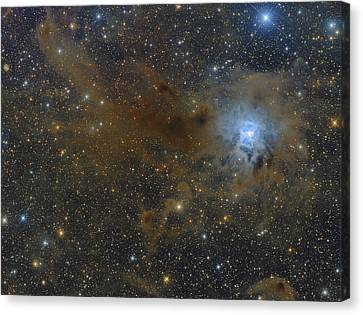 Star Evolution Canvas Print - The Iris Nebula In The Constellation by Roberto Colombari