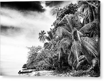 The Island In Black And White Canvas Print by John Rizzuto