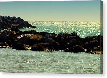 The Jetties Canvas Print by Debra Forand
