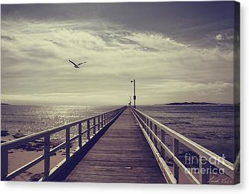 The Jetty Canvas Print by Linda Lees