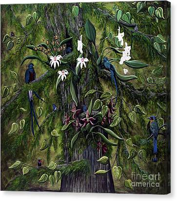 The Jungle Of Guatemala Canvas Print