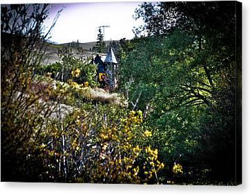 The Junk Castle - We Found Oz Canvas Print by David Patterson
