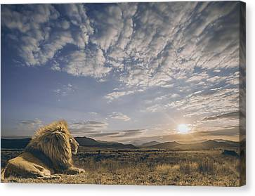 The King And His Kingdom Canvas Print by Jackson Carvalho