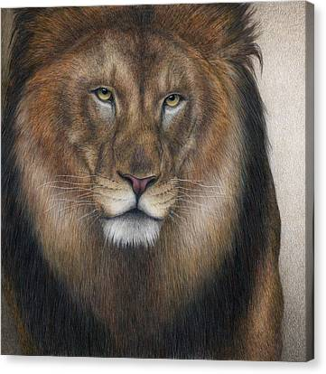 The King Grows Weary  Canvas Print by Pat Erickson