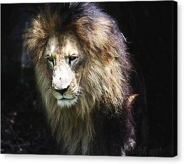 The King In The Shadows Canvas Print