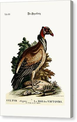 The King Of The Vultures Canvas Print by Splendid Art Prints