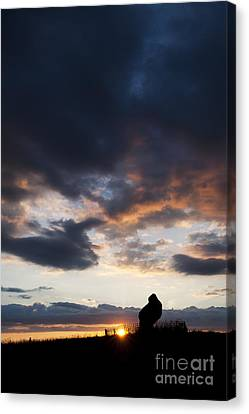 The King Stone Sunset Canvas Print by Tim Gainey