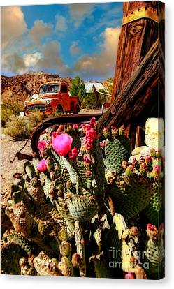 The Kings Ride Canvas Print