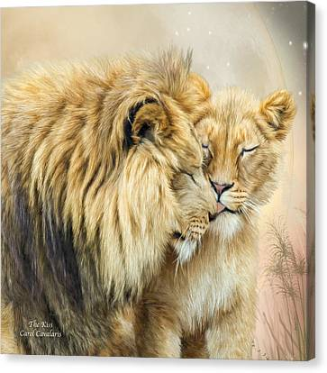 Lions Canvas Print - The Kiss by Carol Cavalaris