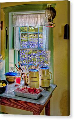 The Kitchen Window Canvas Print