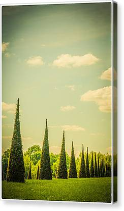 The Knot Garden's Triangular Landscaping Canvas Print