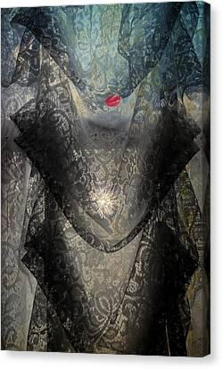 The Lace Veil  Canvas Print