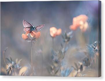 Pastel Canvas Print - The Lady Of Lothlorien by Fabien Bravin
