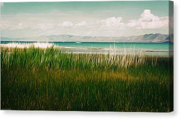 The Lake - Digital Oil Canvas Print