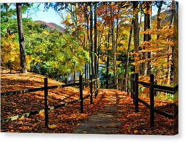 The Lake Path Canvas Print by Kenny Francis
