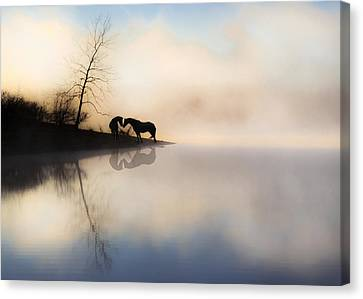 The Lake Shore Canvas Print by Ron  McGinnis