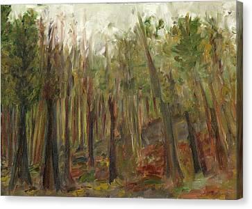 The Land Between II Canvas Print by David Dossett