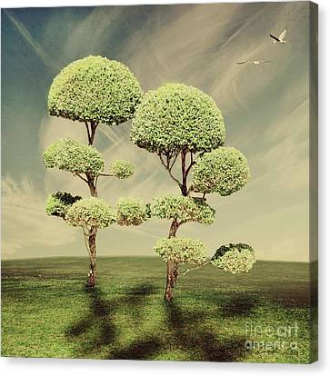 The Land Of The Lollipop Trees Canvas Print by Linda Lees