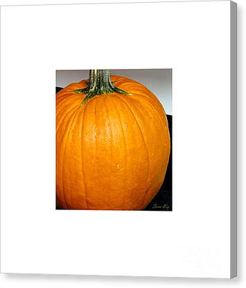 The Last Gift From The Autumn. Holiday Collection 2015 Canvas Print