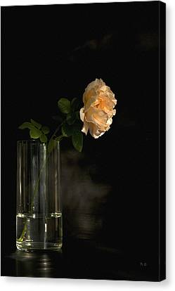 The Last Rose Of Summer Canvas Print by Theresa Tahara