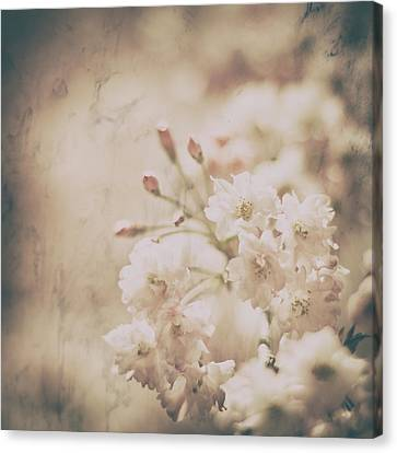 Early Spring Canvas Print - The Lasting Perfume by Robin Konarz