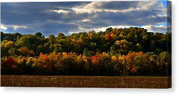 Southern Indiana Autumn Canvas Print - The Layers Of Autumn by Julie Dant